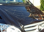 Criminal scratching on a car bonnet