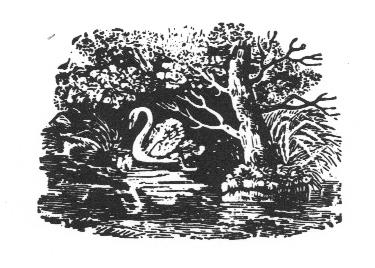Dulwich Society Logo